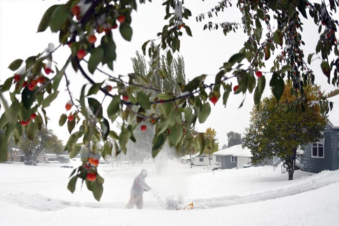 Crab apples still cling to the green leafed branches while Thomas Kok uses a snow blower to clear his driveway and sidewalks in front of his home, Friday, Oct. 11, 2019 in Bismarck, N.D.  North Dakota Gov. Doug Burgum on Friday activated the state's emergency plan due to what he called a crippling snowstorm that closed major highways and had farmers and ranchers bracing for the potential of huge crop and livestock losses.