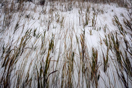 Grass is bent by the wind during the first snowfall of the winter season on Thursday, Oct. 10, 2019, in Meade County, S.D. A powerful winter-like storm moving through the Great Plains was closing schools and causing travel headaches in several states, authorities said Thursday.