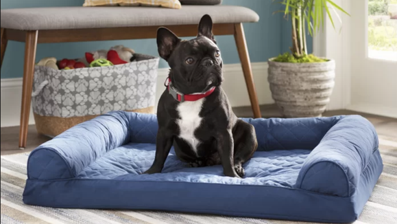 Give your dog's tired bones some rest.