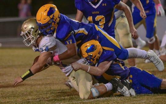 Wren sophomore Evan Goodwin(17) sacks DW Daniel senior Tyler Venables(24) during the fourth quarter at Wren High School in Piedmont Friday, October 11, 2019.