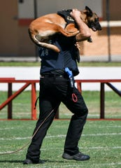 Dave Klimek carries his partner, K9 Bee as they run the obstacle course during the Space Coast Police K9 competition 20 military and police K9 units from all over the world compete in the Second Annual Space Coast Police K9 Competition at Dick Blake Stadium in Cocoa.