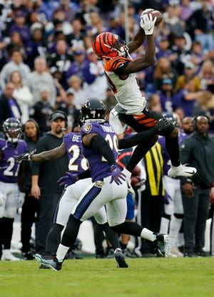 Cincinnati Bengals wide receiver Auden Tate (19) leaps to make a catch down the sideline to keep a drive going in the fourth quarter of the NFL Week 6 game between the Baltimore Ravens and the Cincinnati Bengals at M&T Bank Stadium in Baltimore on Sunday, Oct. 13, 2019. The Bengals remained winless with a 23-17 loss to the Ravens.