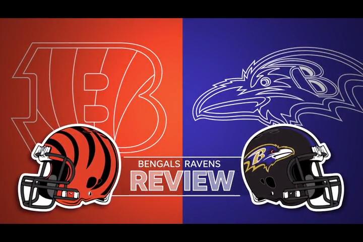 Cincinnati Bengals - cover