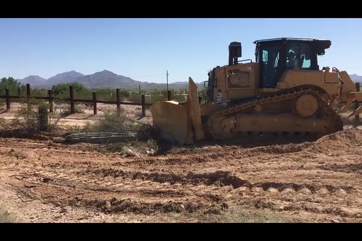 Feds explain conservation measures after viral video shows bulldozed saguaro at Arizona border