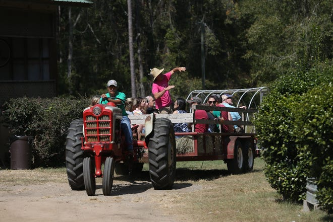 Ken Foster gives a hay ride tour of his parents farm, Gold Acres, during the 2019 Farm Tour Sunday, Oct. 13, 2019.