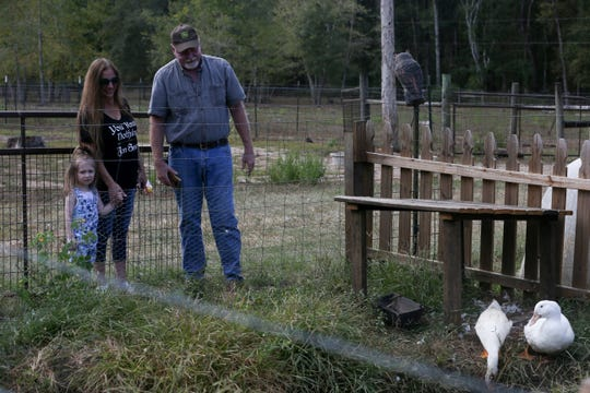 Jena Brady, 3, Melissa Varlese and Dean Kossol look at the ducks at Golden Acres Ranch Ranch during the 2019 Farm Tour Sunday, Oct. 13, 2019.