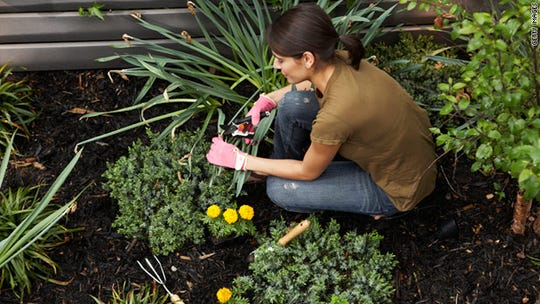 English Gardens is offering a Goodnight Garden class.