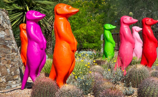 "The Cracking Art Collective in Italy has created more than 1000 animal sculptures for an exhibit at Desert Botanical Garden entitled ""Wild Rising"".  Colorful animal sculptures are scattered throughout the garden, Wednesday, October 9, 2019."