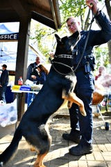 York County Sheriff's Office K-9 Unit's Sgt. Tommi gets a piece of a Mac & Cheese Dog from handler, Cpl. Taylor Eck as York County law enforcement agencies compete with their best hot dog recipes during the second annual Top Dog Contest and Fundraiser at John C. Rudy Park in Springettsbury Township, Sunday, Oct. 13, 2019. Dawn J. Sagert photo