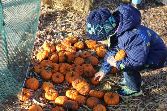 The 10th Annual Pumpkinfest runs from 4 p.m. to 7 p.m. Oct. 18 at Lake George.
