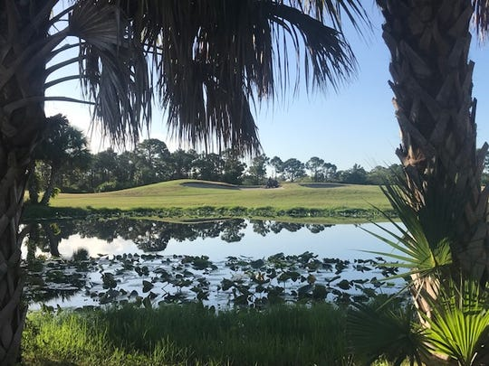 The Eagle Marsh Golf Club is undergoing renovations after two Swedish golf enthusiasts purchased the course with the hopes of bringing players from all over to Martin County.