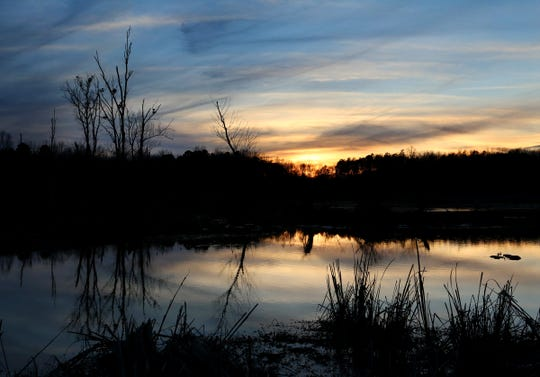A sunset at Lake Conestee Nature Park