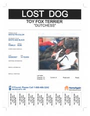 Katheryn Strang's lost dog signs for Dutchess, first posted 12 years ago.