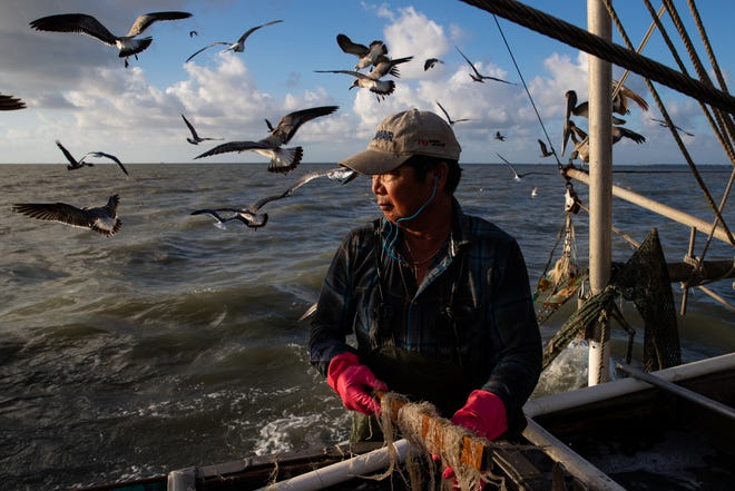 Doan Pham looks out in to the Aransas Bay as he sorts what he caught after unloading his net in to tanks on the deck of his shrimping boat, Margie on Tuesday, Oct. 1, 2109.