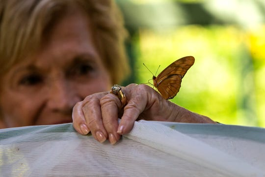 A butterfly lands on Sandie Schaub's hand as she and her husband Ernie Schaub releases 100 new butterflies inside the new Ernie and Sandie Schaub Butterfly and Orchid Pavilion at the Everglades Wonder Gardens in Bonita Springs on Tuesday, Oct. 15, 2019.