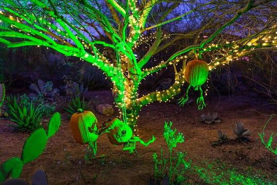 Strange Garden en el Jardín Botánico.