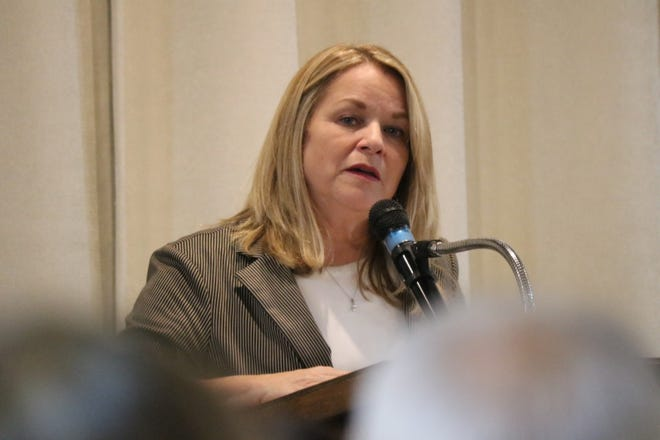 Brenda Cronin, executive director of the Mental Health and Recovery Board  of Erie and Ottawa Counties, discussed the importance of its upcoming levy on the ballot in November.