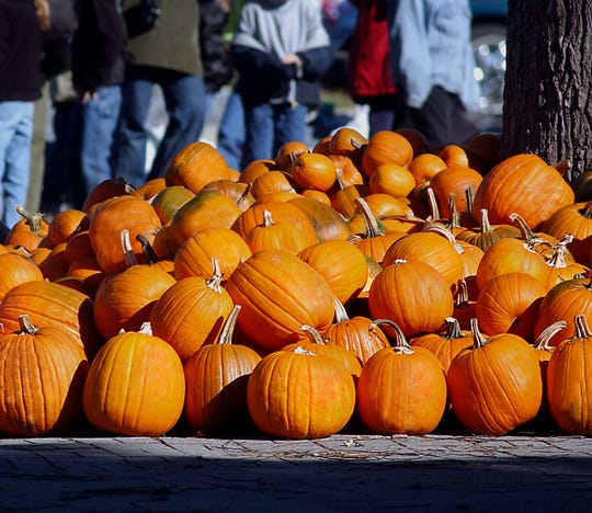 The Beacon Sloop Club's Pumpkin Festival will be held Oct. 20 from noon to 5 p.m.
