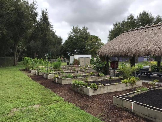 The Indiantown Community Garden project was a nominee for a 2019 Keep Martin Beautiful Environmental Stewardship Award.