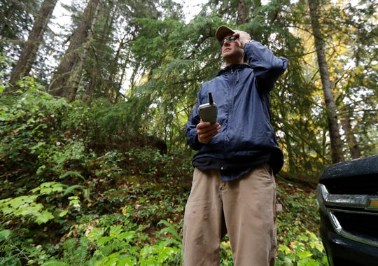 """In this Oct. 23, 2018 photo, Dave Wiens, a biologist who works for the U.S. Geological Survey, stands in a forest near Corvallis, Ore., as he uses a remote control to trigger a digital bird calling device intended to attract barred owls to be culled. """"It's a little distasteful, I think, to go out killing owls to save another owl species,"""" said Wiens, who still views each shooting as """"gut-wrenching"""" as the first. """"Nonetheless, I also feel like from a conservation standpoint, our back was up against the wall. We knew that barred owls were outcompeting spotted owls and their populations were going haywire."""" (AP Photo/Ted S. Warren)"""