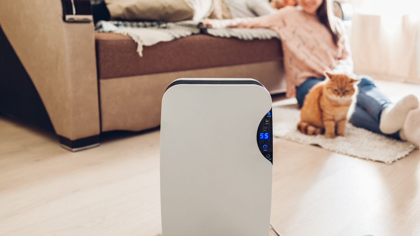 The best air purifiers of 2019