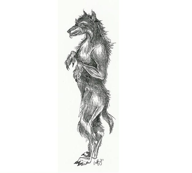 "From author Linda Godfrey, this drawing of ""The Indigenous Dogman,"" according to witness accounts. The creature has reportedly spotted near the Fort Custer Recreation Area in Augusta."