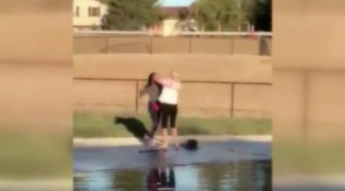 Raw video: Fight between two women at Fairfield dog park
