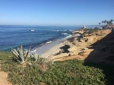 View of La Jolla beach.