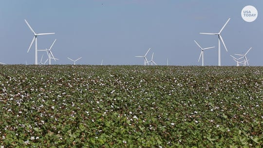 Turbines to the max: Texas produces more wind energy than nearly anywhere else in the world