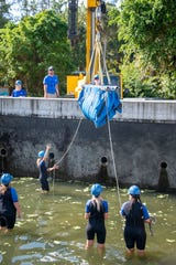 Cincinnati Zoo manatee experts, DHL and Sea World Orlando crews worked together to move manatees on Wednesday.