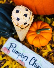 Pumpkin chip ice cream at Churn in Old Town Fort Collins