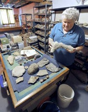 Robert Wolf of Fort Dodge examines some of the fossils in his vast collection. Roughly 18,000 were recently donated to the University of Iowa, with smaller amounts to two other universities.