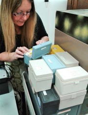 Tiffany Adrain, who manages the UI Paleontology Repository, overlooks the large stack of plastic index card boxes which documents the 18,000 fossils donated by Robert Wolf of Fort Dodge, who kept meticulous records on his finds.