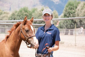 The University of Arizona is set to open a new College of Veterinary Medicine in 2020, where students will spend their first two years in courses that focused on active-learning experiences instead of lectures.