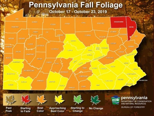 Pennsylvania fall foliage map for the week Oct. 17-23, 2019.