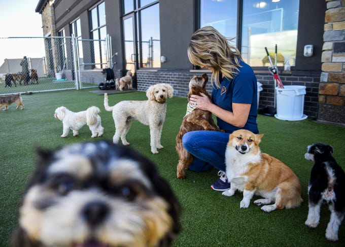 Owner Jeanine Hoff Lubbenon plays with dogs during their outdoor time on Thursday, Oct. 17, 2019 at Paws Pet Resort.