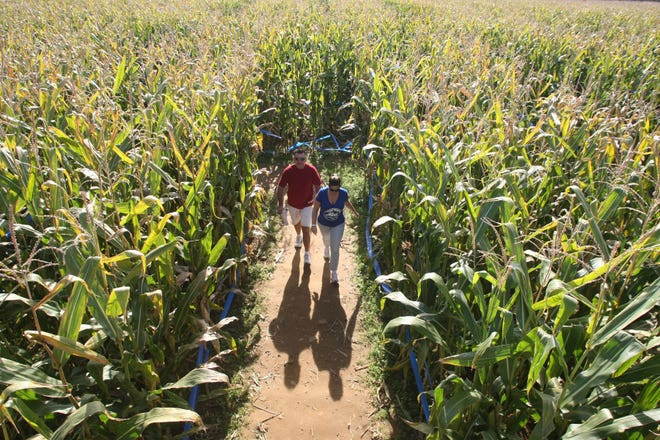 Greater Bridgeton Amish Market will host a Fall Festival and Craft Show, which will be heldfrom 9 a.m. to 4 p.m. Oct. 19 at 2 Cassidy Court in Bridgeton, will include a corn maze.
