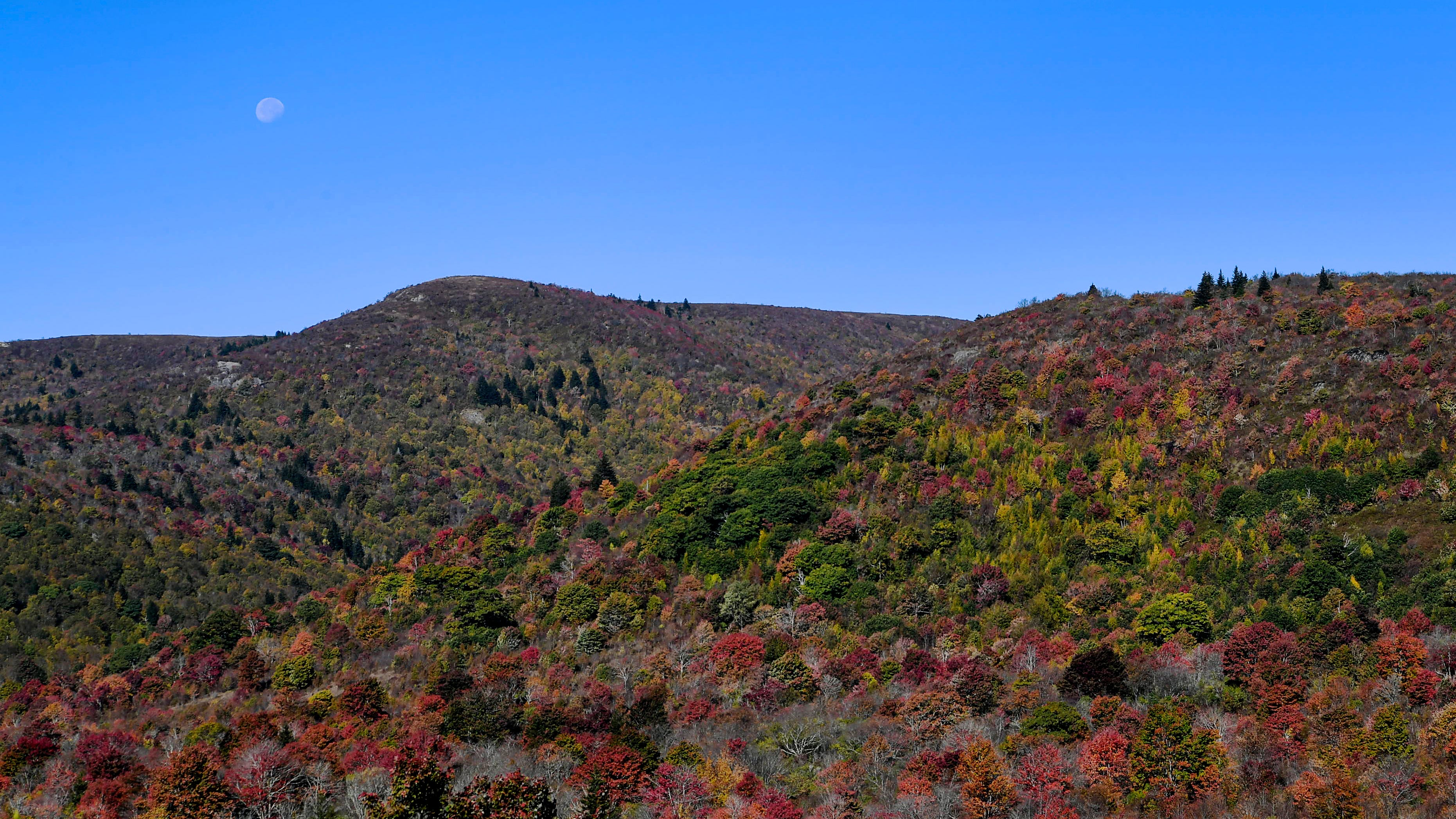 Where can you see fall foliage in WNC this weekend?