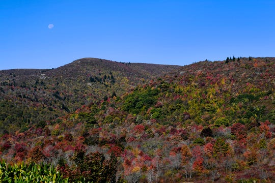 The moon hangs over Graveyard Fields along the Blue Ridge Parkway October 17, 2019.