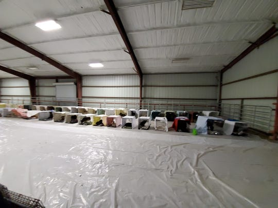 Madison County Animal Services set up a temporary shelter inside the Madison County Fairgrounds to accommodate 51 dogs seized Oct. 16.