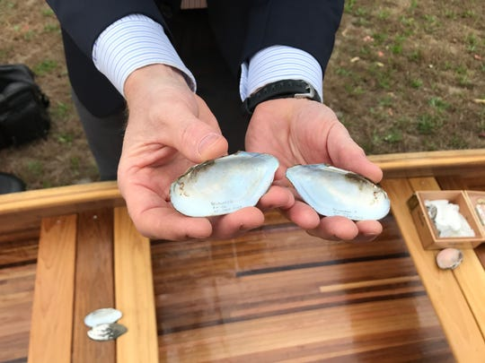Erik Silldorff, a biologist with the Delaware River Basin Commission, holds shells of the Eastern pondmussel, which can be found in the tidal portion of the Cooper River.