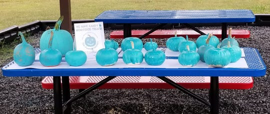 Teal Pumpkins ready for local businesses thanks to BSA Troop 50/51 who painted the pumpkins at a Teal Pumpkin Project painting party held at Beaver Ridge United Methodist Church.