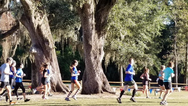Come and check out Leon County's beautiful Apalachee Regional Park at the Trash Dash.