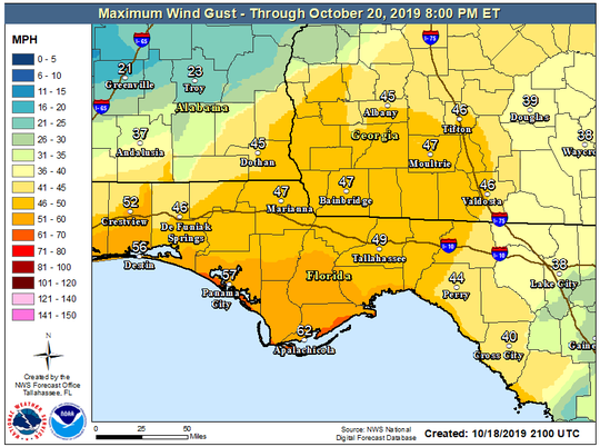 A maximum wind gust projection for Tropical Storm Nestor.