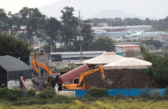 FILE - In this Sept. 17, 2019, file photo, backhoes prepare to dig a pit to bury culled pigs at a farm in Paju, South Korea. South Korea on Tuesday, Oct. 15, is deploying snipers, installing traps and flying drones along the rivals' tense border to kill wild boars that some experts say may have spread the animal disease from north to south.
