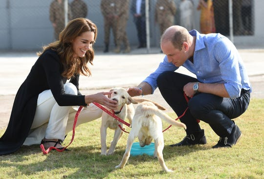 Prince William, Duchess Kate ended Pakistan tour with puppies