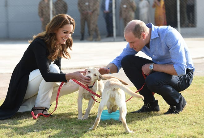 Duchess Kate visits an Army Canine Centre with Prince William on October 18, 2019 in Islamabad, Pakistan.