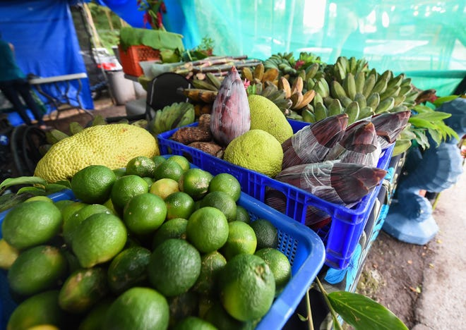 Guahan Sustainable Culture will hosta drive-thru to give out free produce to those in need Friday afternoon in Barrigada.