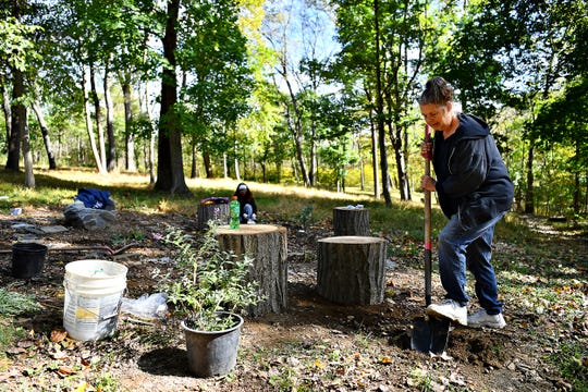 Deanna Graham, of Hallam Borough, works to dig a hole for a Butterfly Bush as community members work together to build a butterfly garden at Clayton Eli Emig Park in Hallam Borough, Saturday, Oct. 19, 2019. Dawn J. Sagert photo