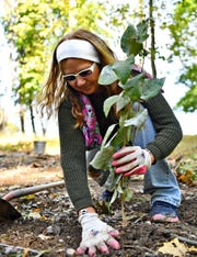 Cindy Knox, of Hallam Borough, plants a lilac bush as community members build a butterfly garden at Clayton Eli Emig Park in Hallam Borough, Saturday, Oct. 19, 2019. Dawn J. Sagert photo